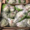 Lettuce Batavia Green