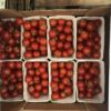 Tomatoes Cherry Pre Packed