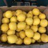 Lemons Interdonato