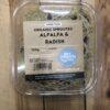 Alfalfa Radish