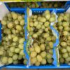 Grapes White Seedless