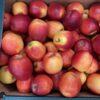 Apples Crimson Crisp