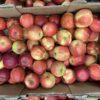 Apples Jonagold Red Large
