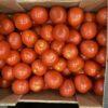Tomatoes Plum