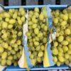 Grapes White Italia Seeded